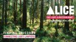 alice-bild-2016